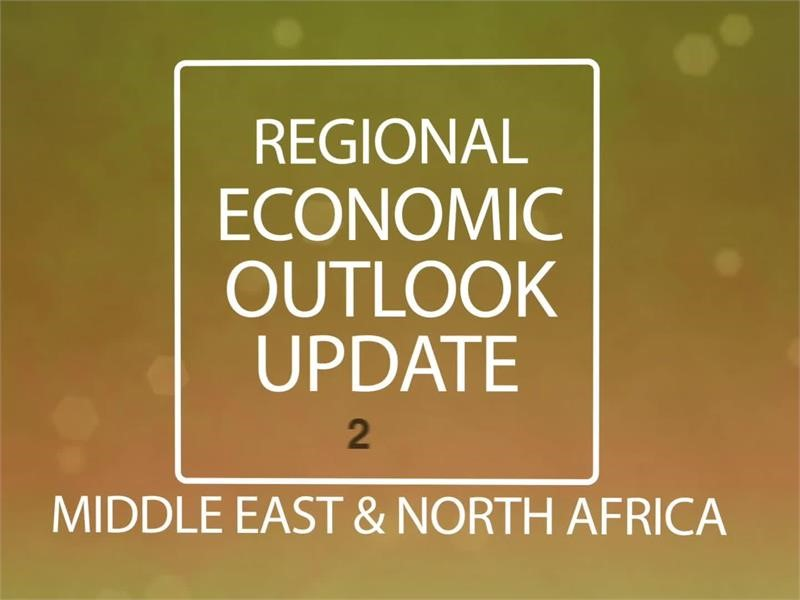 Middle East and North Africa 2017 Economic Outlook Update