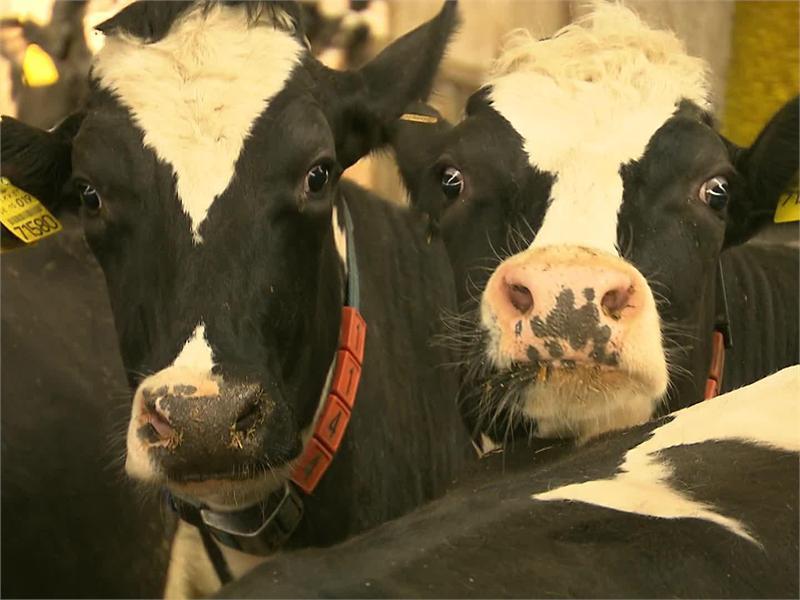 Update zum Milchgipfel 30-5-2016:  Einblicke in einen der modernsten Milchhöfe