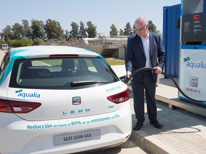 From Wastewater To Sustainable Fuel