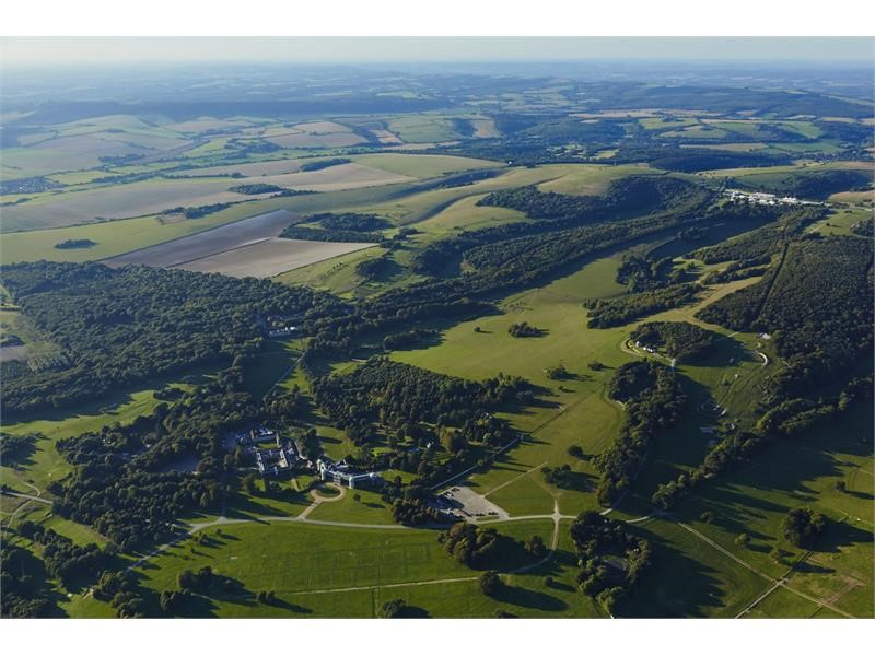 Behind the Wheel: The Goodwood Estate, in the fast lane for sustainable growth