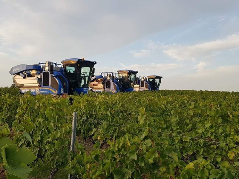 New Holland introduces new destemmer mesh for its Braud grape harvesters