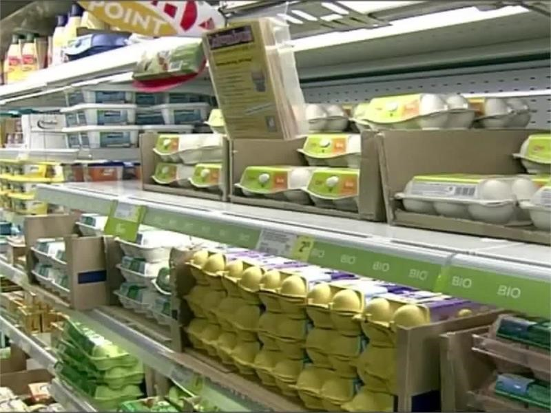 MEPs discuss how to tackle contaminated eggs scandal