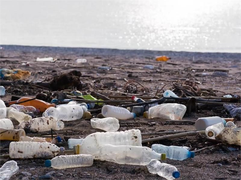 New EU rules on single use plastics to help reduce pollution
