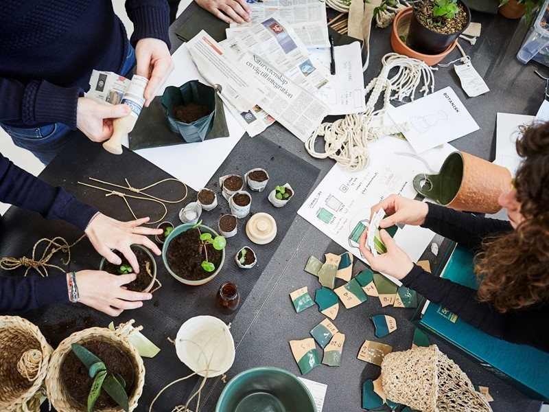 Growing plants and jobs with BOTANISK collection