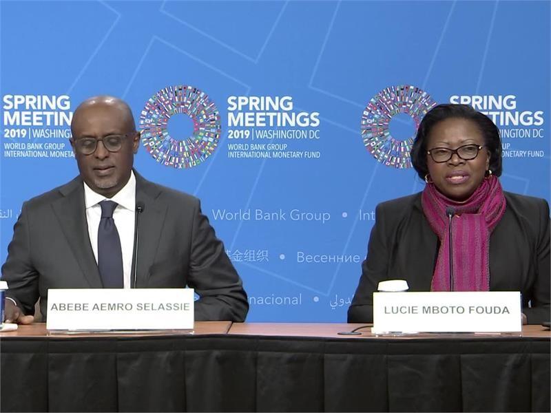 IMF African Economies